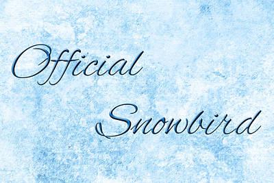 Senior Digital Art - Official Snowbird 4 by Andee Design