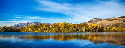 Aspen Trees Photograph - Ogden by David Millenheft