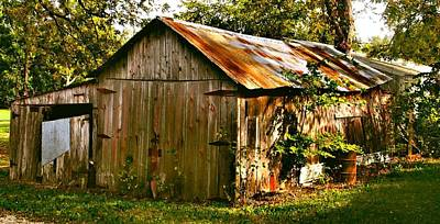 Shed Photograph - Oh Boy  I'm Tired by Lynne and Don Wright