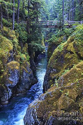 Mt Rainier National Park Photograph - Ohanapecosh River by Mark Kiver