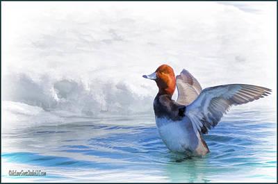 Bath Photograph - Oil Paint Redhead Duck Bath by LeeAnn McLaneGoetz McLaneGoetzStudioLLCcom