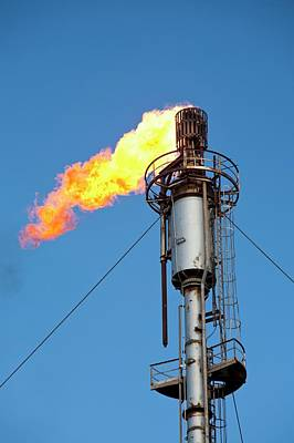 Oil Terminal Flaring Off Gas Print by Ashley Cooper