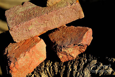 Old House Photograph - Old Bricks by Cheryl Young