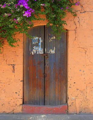 Bougainvilla Photograph - Old Brown Door 3 by Lew Davis