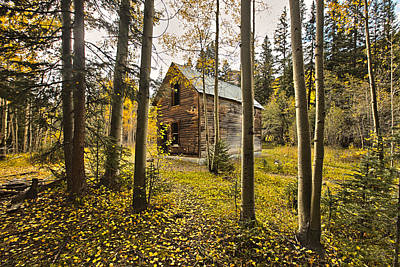 Moose Mixed Media Photograph - Old Cabin In Iron Town Colorado by James Steele