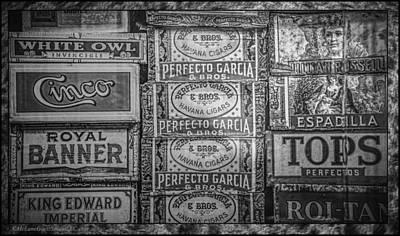Owl Photograph - Old Cigar Boxes by LeeAnn McLaneGoetz McLaneGoetzStudioLLCcom
