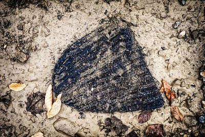 Old Forgotten Wool Cap Lying On The Ground Print by Matthias Hauser