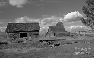 Kathleen Photograph - Old Homestead by Kathleen Struckle