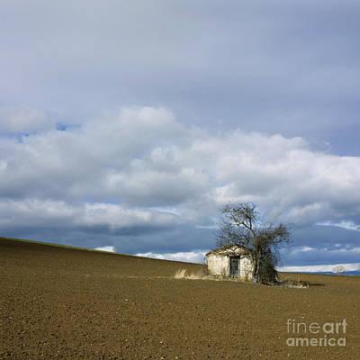 Bare Trees Photograph - Old Hut. Auvergne. France by Bernard Jaubert