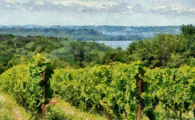 Old Mission Peninsula Vineyard Print by Michelle Calkins