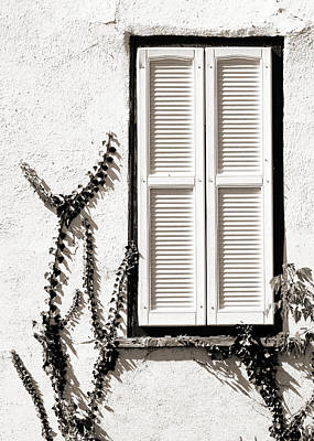 Window Photograph - Old Painted Shutter 2 by Marilyn Hunt