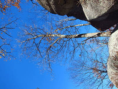 Old Rag Hiking Trail - 121211 Print by DC Photographer