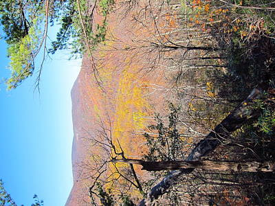 Old Rag Hiking Trail - 121215 Print by DC Photographer