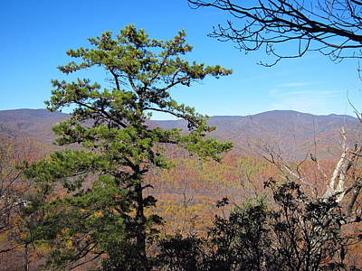 Old Rag Hiking Trail - 121221 Print by DC Photographer