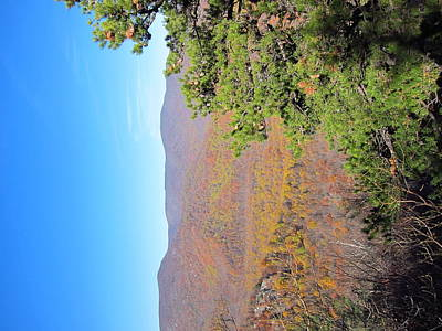 Old Rag Hiking Trail - 121224 Print by DC Photographer