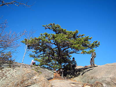 Old Rag Hiking Trail - 121238 Print by DC Photographer