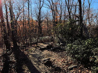 Old Rag Hiking Trail - 121248 Print by DC Photographer