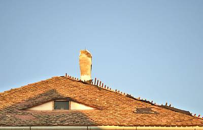 Old Roof With  A Chimney And A Triangular Attic Window Print by Ion vincent DAnu