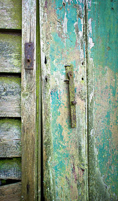 Old Shed Door Print by Tom Gowanlock