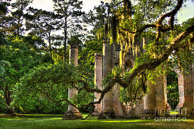 Old Sheldon Church Ruins In The Late Afternoon Print by Reid Callaway