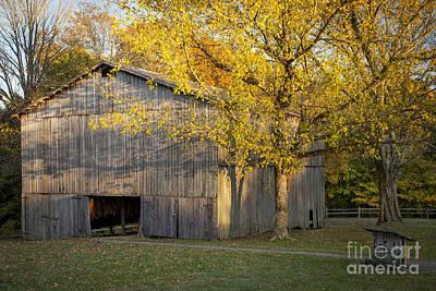 Old Tobacco Barn Print by Brian Jannsen