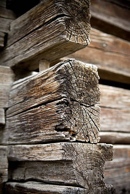 Photograph - Old Wood by Frank Tschakert