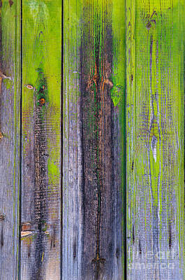 Old Wooden Background Print by Carlos Caetano