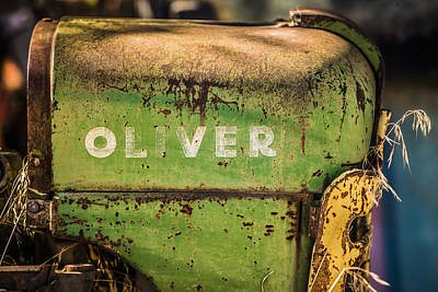 Oliver Print by Steve Smith