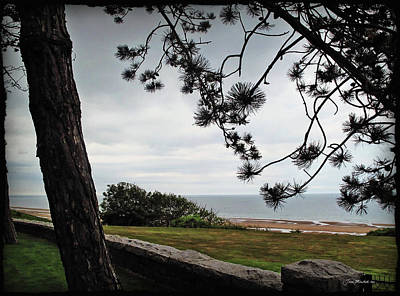 Omaha Beach Under Trees Print by Joan  Minchak