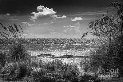 On A Clear Day-bw Print by Marvin Spates