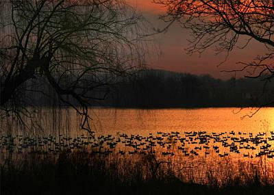 On Golden Pond Print by Lori Deiter