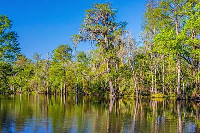 Cypress Swamp Photograph - On The Bayou 2 by Steve Harrington