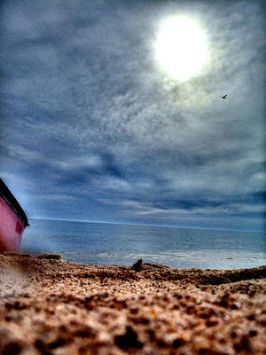 Photograph - On The Beach by Alicia Forton