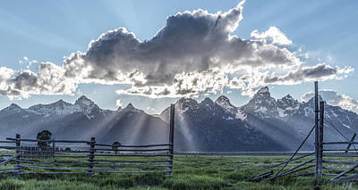 Colorful Photograph - On The Fence by Jon Glaser