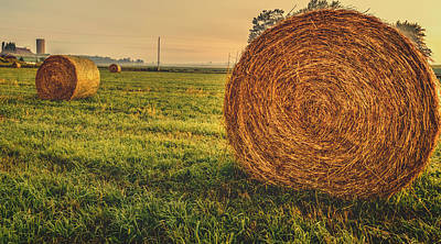 Field Photograph - On The Field  by Garvin Hunter