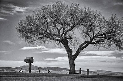 Lee Winter Photograph - On The Road To Taos by Mary Lee Dereske