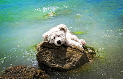 On The Rocks - Teddy Bear Art By William Patrick And Sharon Cummings Print by Sharon Cummings