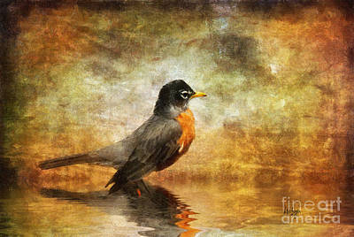 Robin Digital Art - On The Watch For Worms by Lois Bryan