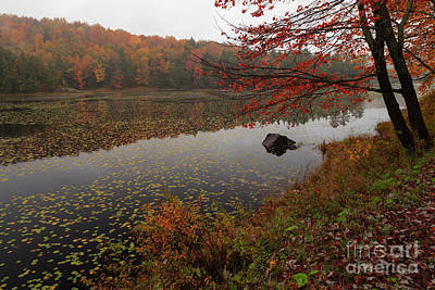 One Of The Worcester Ponds Print by Charles Kozierok