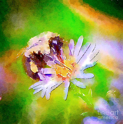 Watercolor Photograph - One Summer Day by Kerri Farley