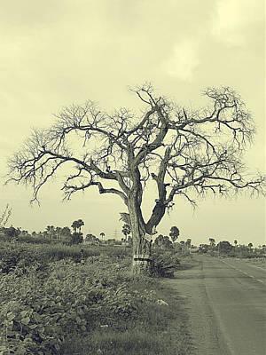 Wall Hanging Photograph - One Tree by Girish J