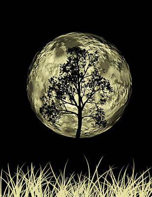 Graphic Digital Art Photograph - One Tree  by Mark Ashkenazi