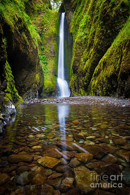 Oneonta Falls Print by Inge Johnsson