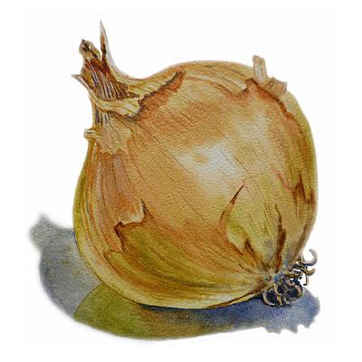 Farmers Market Painting - Onion by Irina Sztukowski