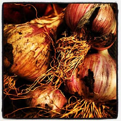 Onions Original by Jeff Klingler