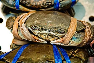 Ooh Crab Print by Dean Harte