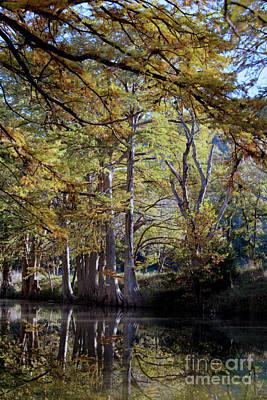 Warner Park Photograph - Oooo Fall by Laurette Escobar