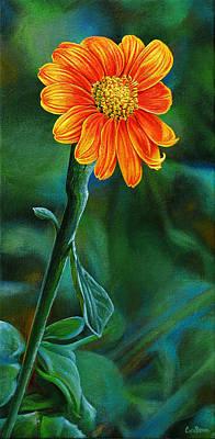 Asters Painting - Orange Aster by Cara Bevan