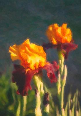 Georgia Okeefe Mixed Media - Orange Bearded Irises by Omaste Witkowski