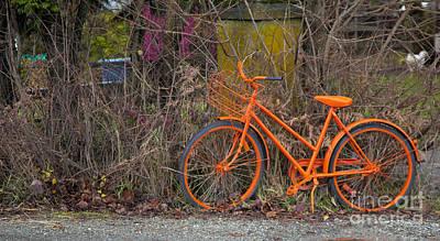 Orange Bike Print by Graham Foulkes